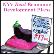 NY's real economic development plans